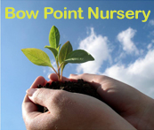 Bow Point Nursery